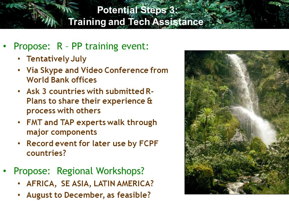 Propose: R – PP training event: Tentatively July Via Skype and Video Conference from World Bank offices Ask 3 countries with submitted R- Plans to share their experience & process with others FMT and TAP experts walk through major components Record event for later use by FCPF countries.