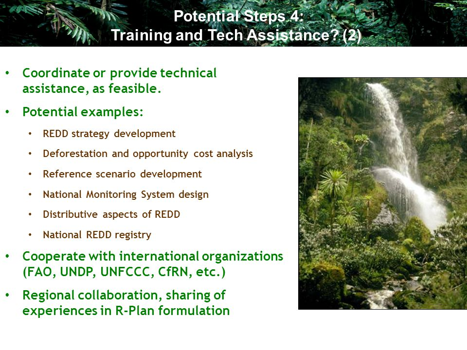 Coordinate or provide technical assistance, as feasible. Potential examples: REDD strategy development Deforestation and opportunity cost analysis Ref