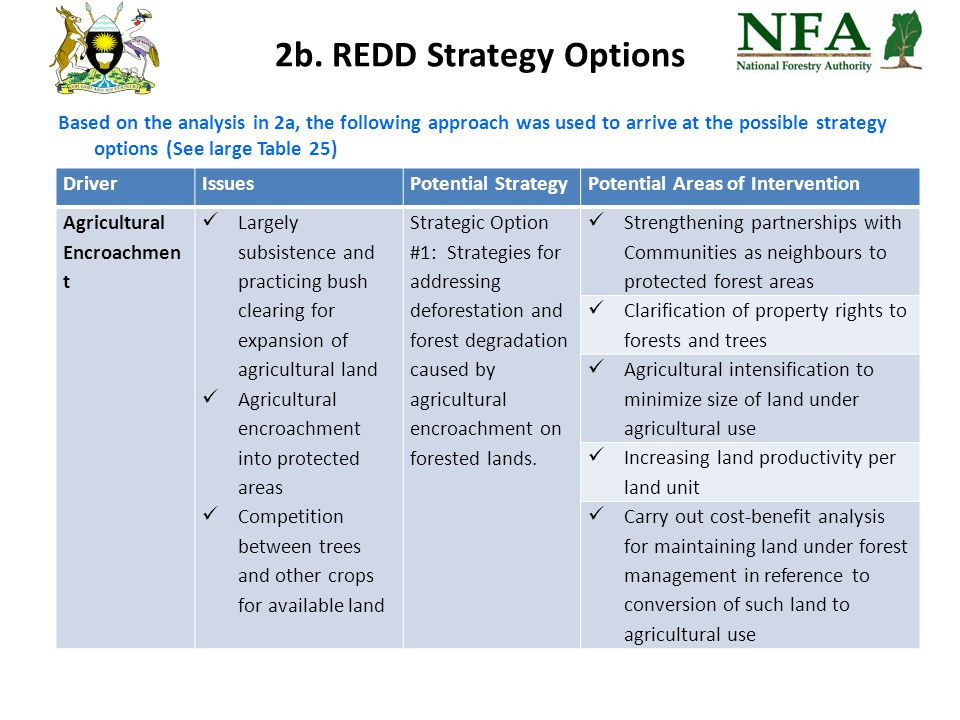 2b. REDD Strategy Options Based on the analysis in 2a, the following approach was used to arrive at the possible strategy options (See large Table 25)