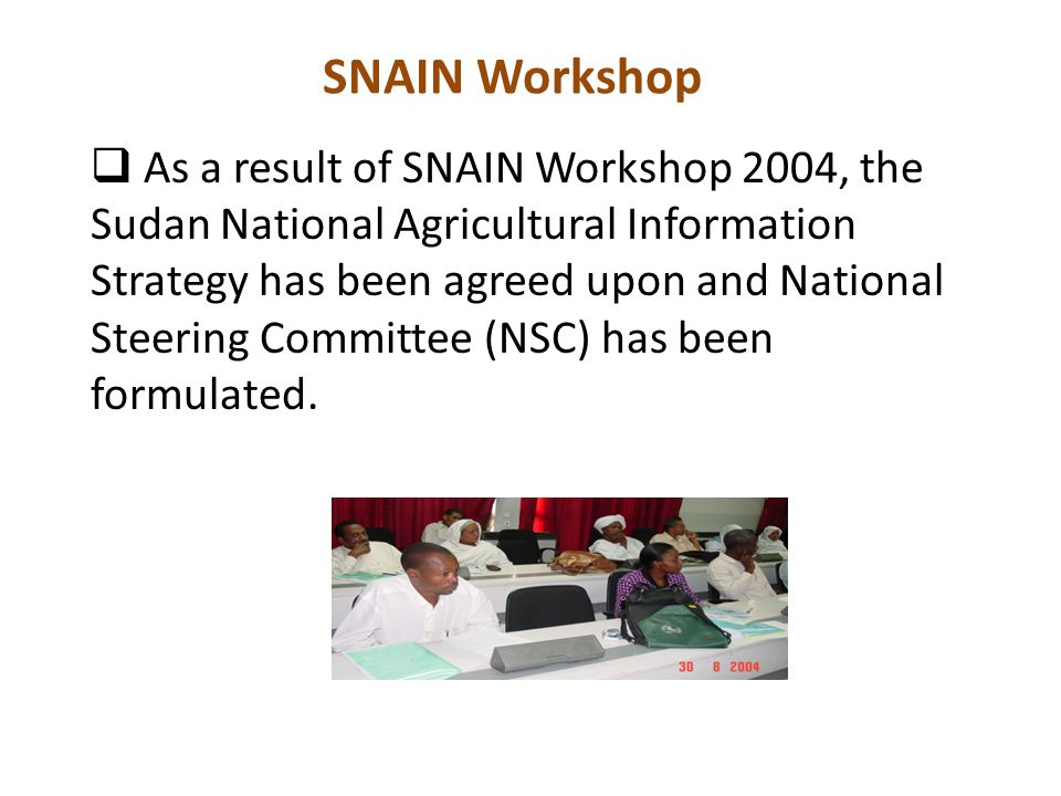 SNAIN Workshop  As a result of SNAIN Workshop 2004, the Sudan National Agricultural Information Strategy has been agreed upon and National Steering Committee (NSC) has been formulated.