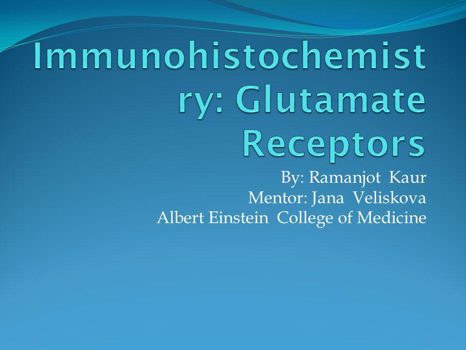By: Ramanjot Kaur Mentor: Jana Veliskova Albert Einstein College of Medicine