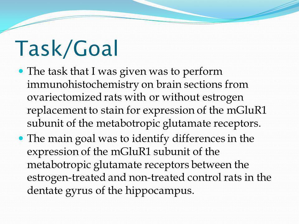 Acknowledgements Dr.Sat Bhattacharya Dr. Jana Veliskova Dr.