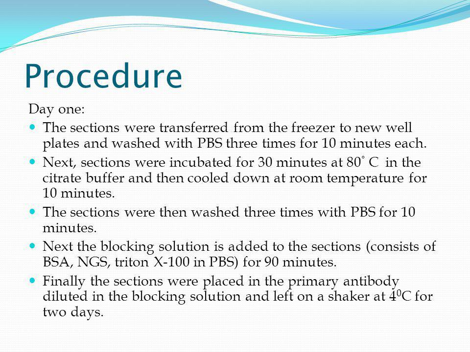 Procedure (continued) Day Two: Sections were washed with PBS three times for ten minutes.