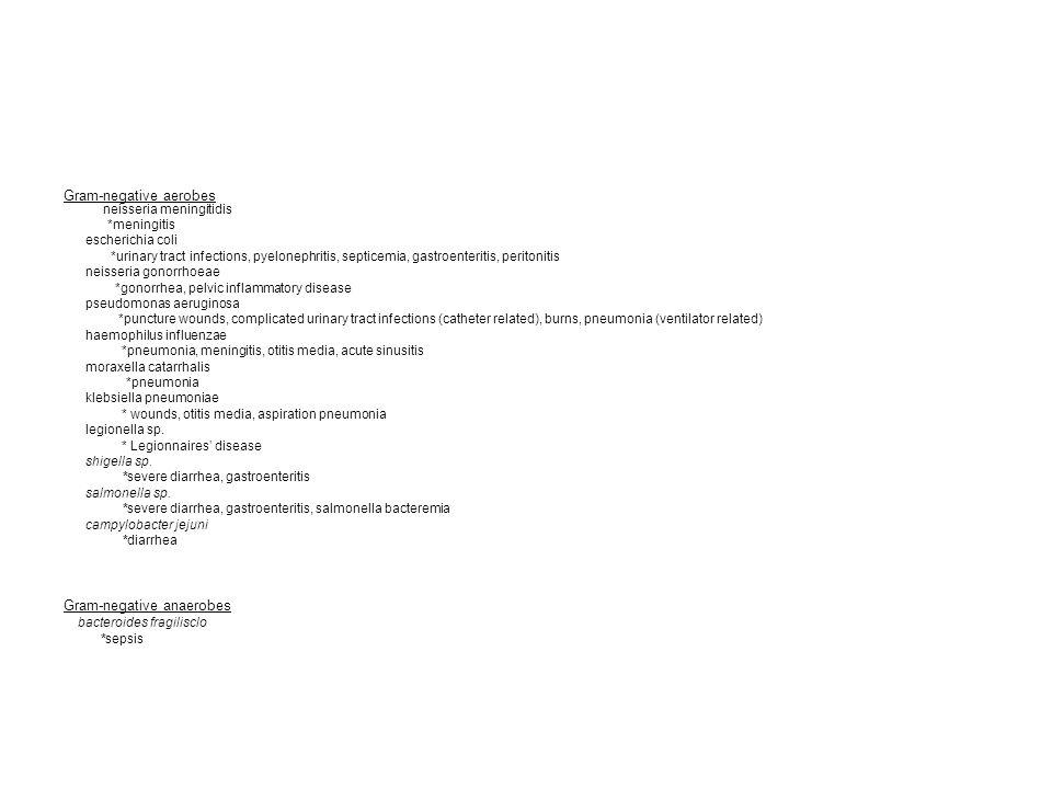 Gram-negative aerobes neisseria meningitidis *meningitis escherichia coli *urinary tract infections, pyelonephritis, septicemia, gastroenteritis, peri