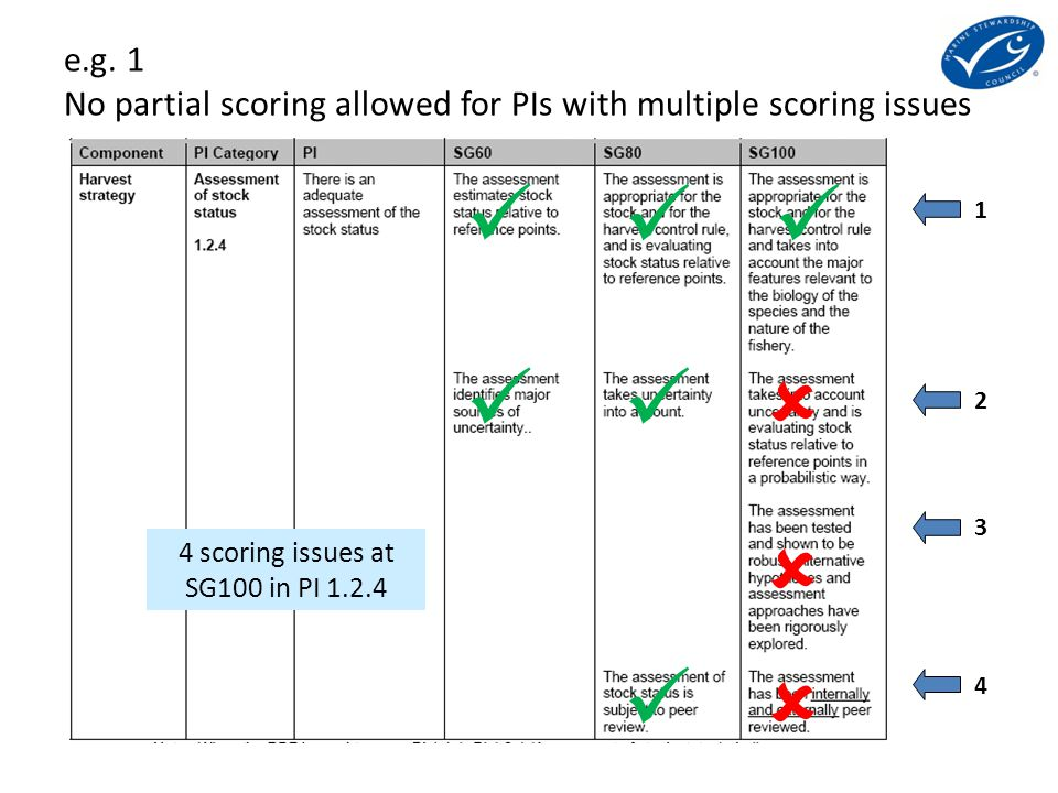 1234 1234 4 scoring issues at SG100 in PI 1.2.4 e.g.