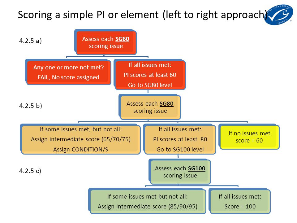 1234 1234 4 scoring issues at SG100 in PI 1.2.4 60 70 or 75 80100 95 85 Scoring a simple PI or element (left to right approach)