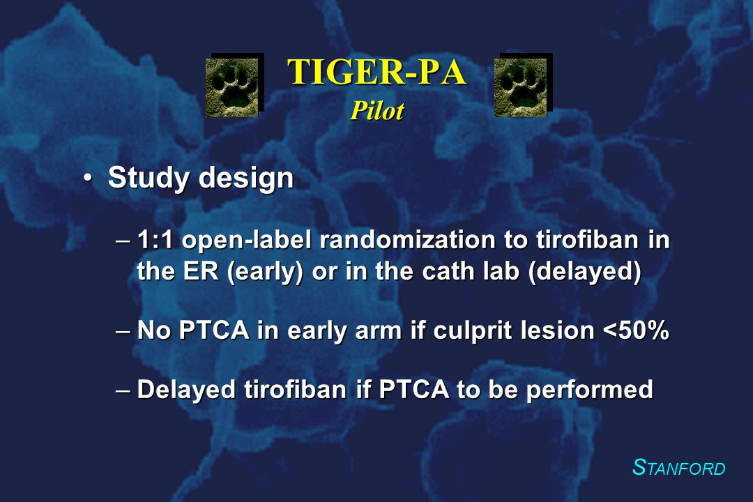 S TANFORD TIGER-PA Pilot Study designStudy design –1:1 open-label randomization to tirofiban in the ER (early) or in the cath lab (delayed) –No PTCA in early arm if culprit lesion <50% –Delayed tirofiban if PTCA to be performed