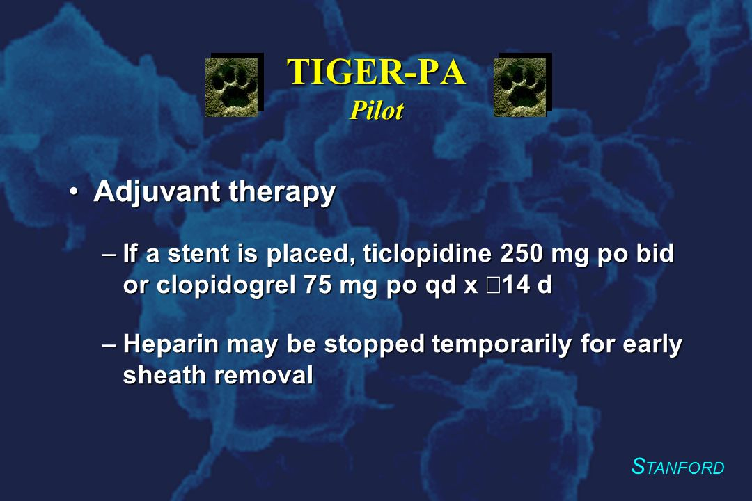 S TANFORD TIGER-PA Pilot Adjuvant therapyAdjuvant therapy –If a stent is placed, ticlopidine 250 mg po bid or clopidogrel 75 mg po qd x  14 d –Heparin may be stopped temporarily for early sheath removal