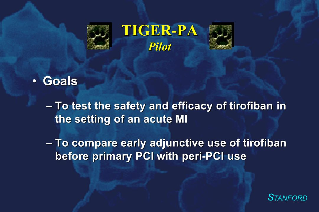 S TANFORD TIGER-PA Pilot TargetsTargets –100 patients –40% power to detect a 15% difference in the TIMI frame count and flow