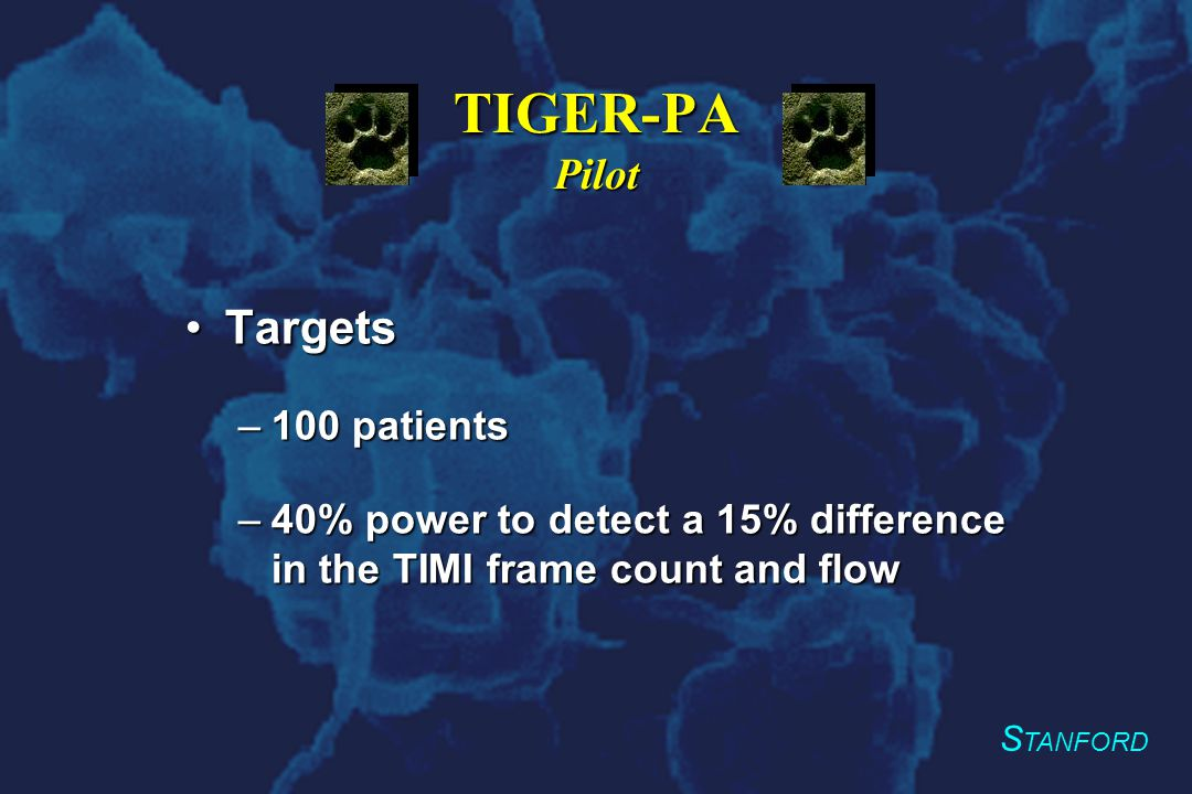 S TANFORD TIGER-PA Pilot Data analysisData analysis –Primary endpoint Blinded observers for TIMI frame count, myocardial perfusion and flow at baseline and after PTCABlinded observers for TIMI frame count, myocardial perfusion and flow at baseline and after PTCA –Secondary endpoint Data monitoring for CBC and CPKsData monitoring for CBC and CPKs Safety monitor for bleeding eventsSafety monitor for bleeding events –Tertiary endpoint Clinical follow-up by chart review and telephoneClinical follow-up by chart review and telephone