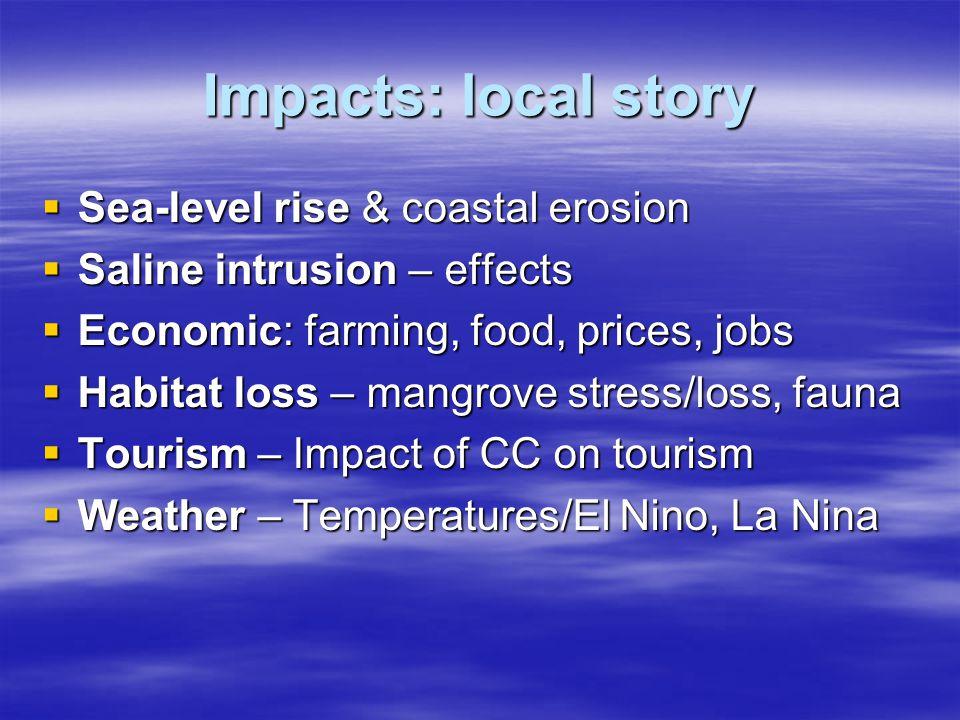 Impacts: local story  Sea-level rise & coastal erosion  Saline intrusion – effects  Economic: farming, food, prices, jobs  Habitat loss – mangrove stress/loss, fauna  Tourism – Impact of CC on tourism  Weather – Temperatures/El Nino, La Nina
