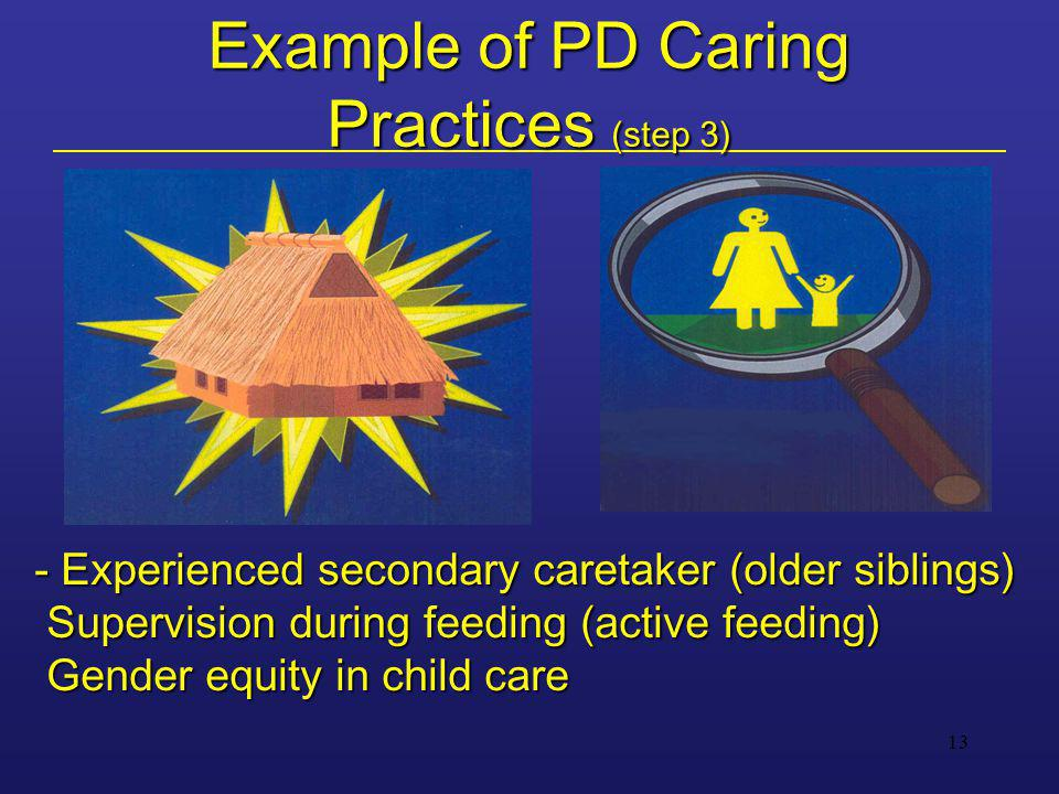13 Example of PD Caring Practices (step 3) - Experienced secondary caretaker (older siblings) Supervision during feeding (active feeding) Gender equit