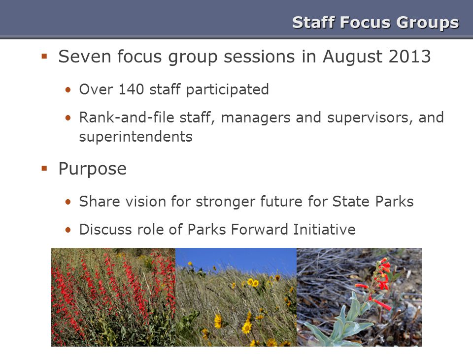 Staff Focus Groups  Seven focus group sessions in August 2013 Over 140 staff participated Rank-and-file staff, managers and supervisors, and superintendents  Purpose Share vision for stronger future for State Parks Discuss role of Parks Forward Initiative