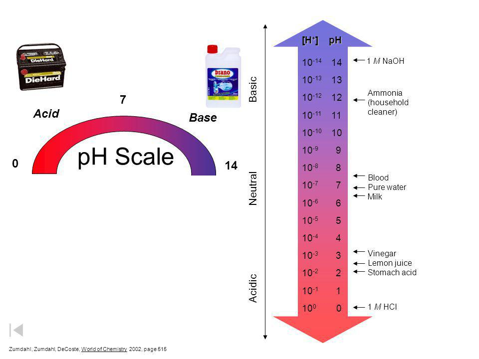 pH Scale Soren Sorensen (1868 - 1939)