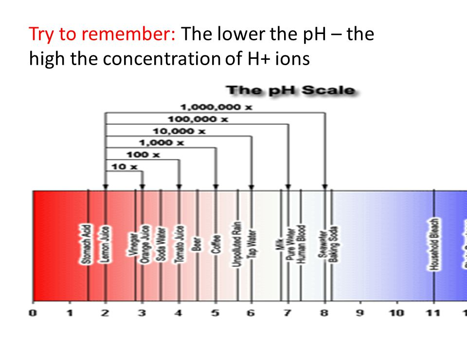 Try to remember: The lower the pH – the high the concentration of H+ ions
