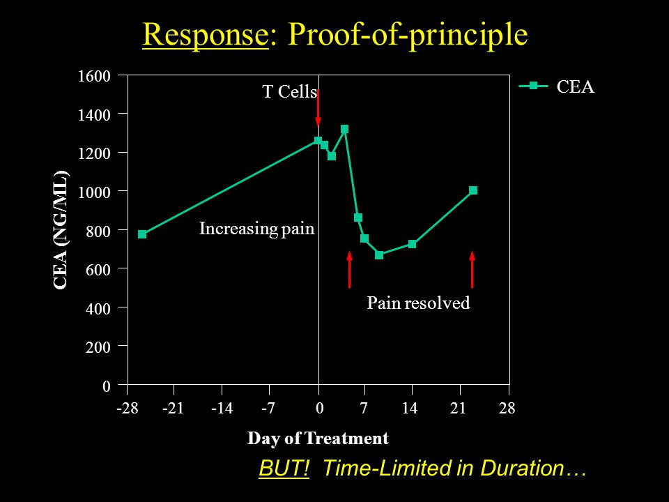 Response: Proof-of-principle Increasing pain Pain resolved 1600 1400 1200 1000 800 600 400 200 0 -28-21-14-707142128 Day of Treatment CEA (NG/ML) T Cells CEA BUT.