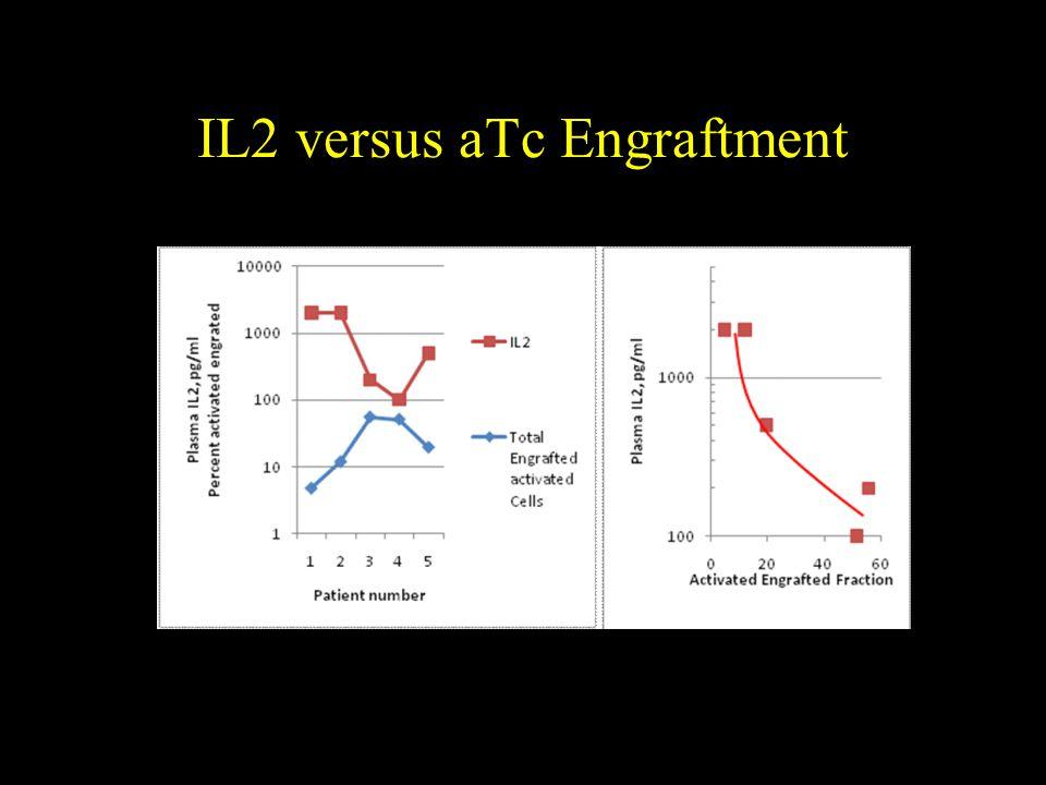 IL2 versus aTc Engraftment