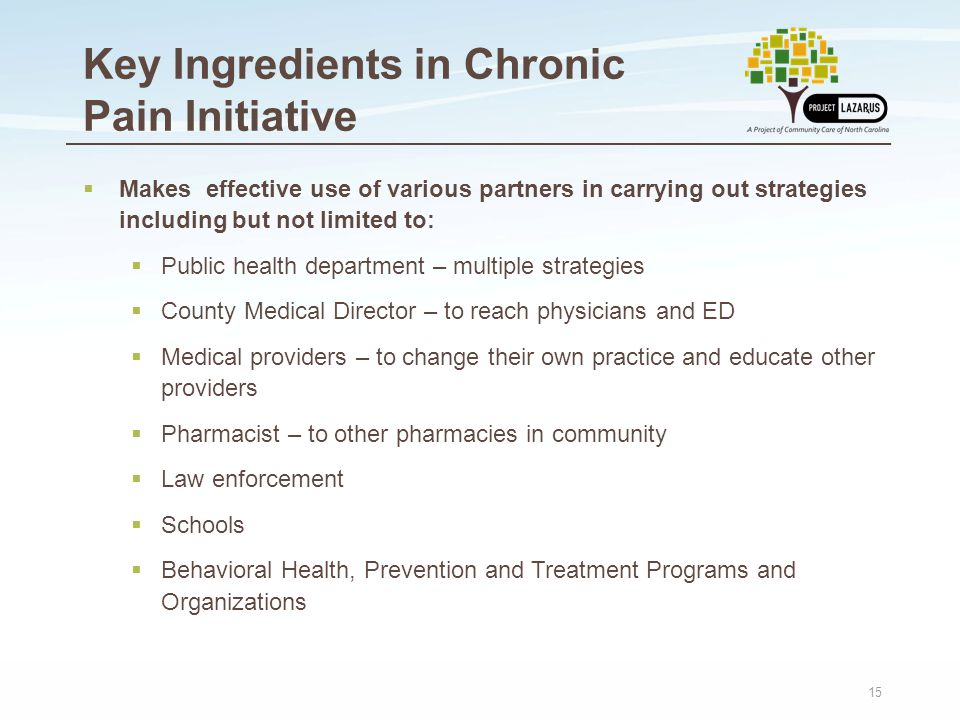 15 Key Ingredients in Chronic Pain Initiative  Makes effective use of various partners in carrying out strategies including but not limited to:  Public health department – multiple strategies  County Medical Director – to reach physicians and ED  Medical providers – to change their own practice and educate other providers  Pharmacist – to other pharmacies in community  Law enforcement  Schools  Behavioral Health, Prevention and Treatment Programs and Organizations