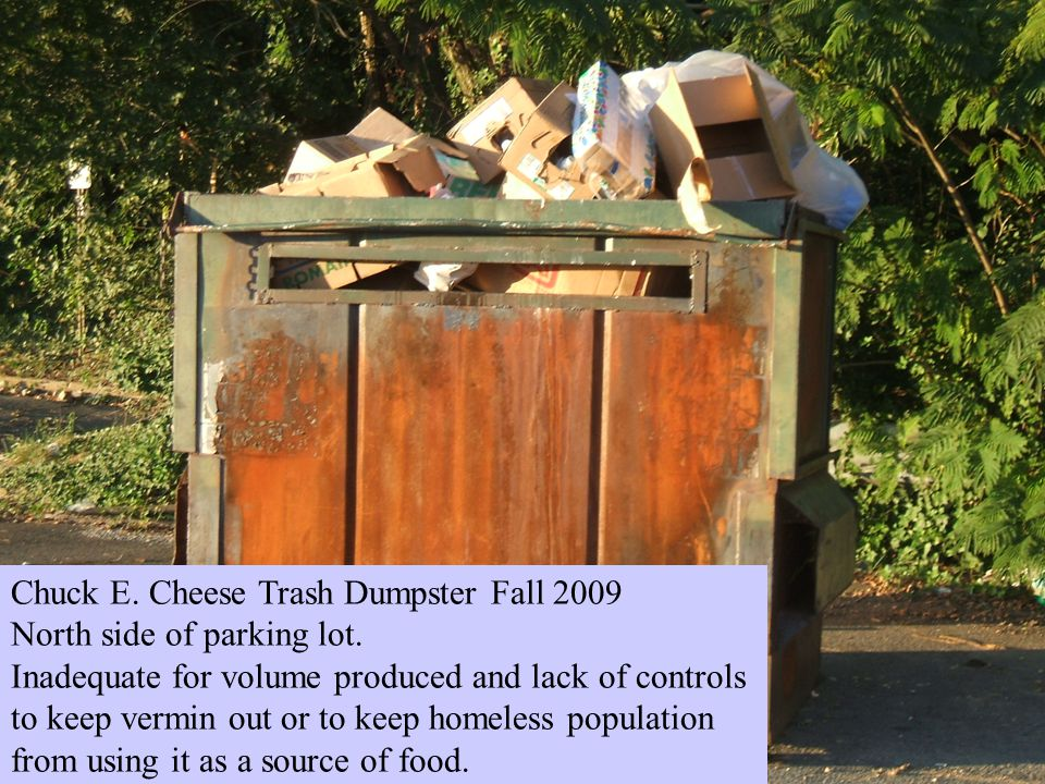 Chuck E. Cheese Trash Dumpster Fall 2009 North side of parking lot.