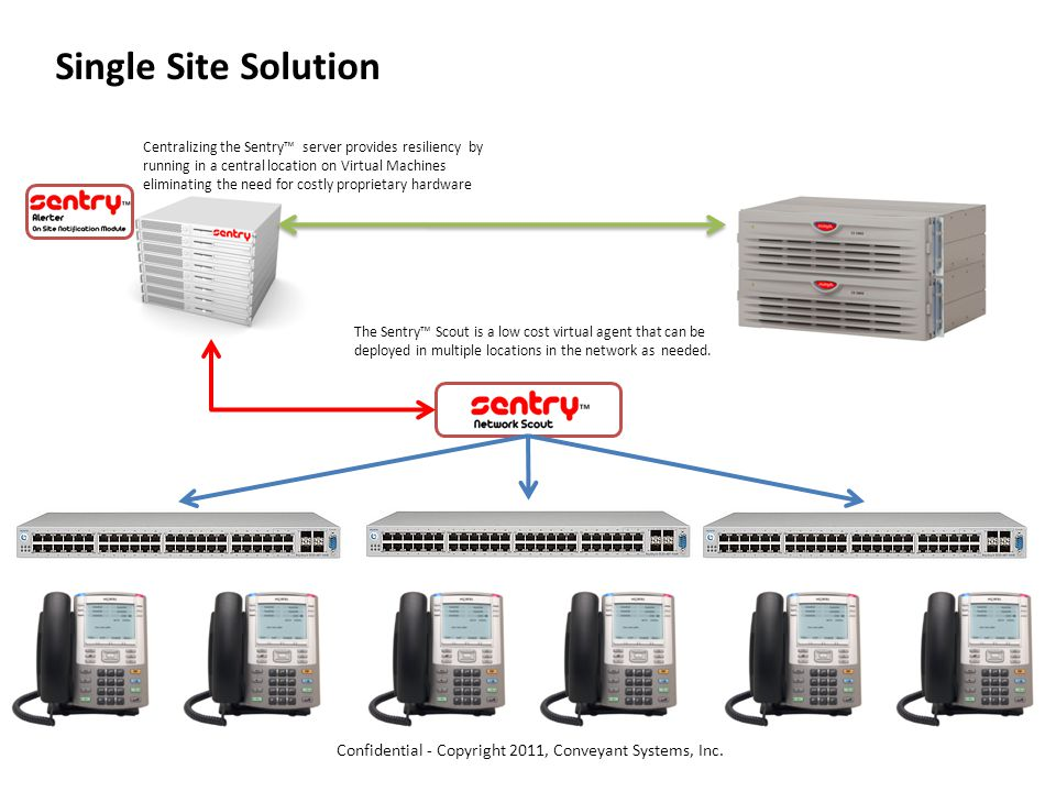 Single Site Solution The Sentry™ Scout is a low cost virtual agent that can be deployed in multiple locations in the network as needed.