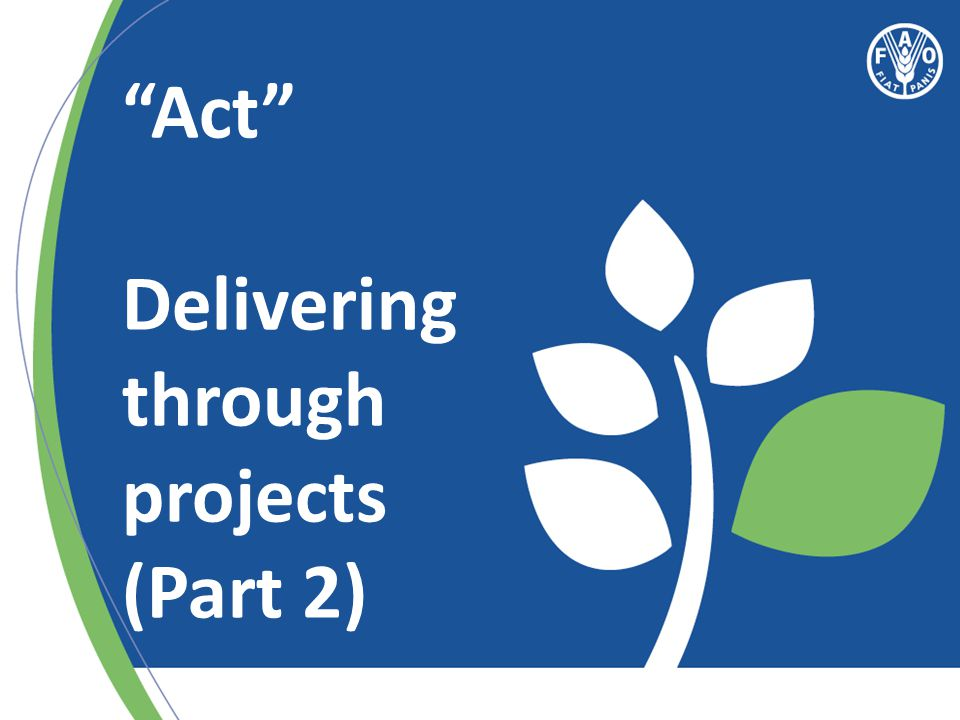 Act Delivering through projects (Part 2)