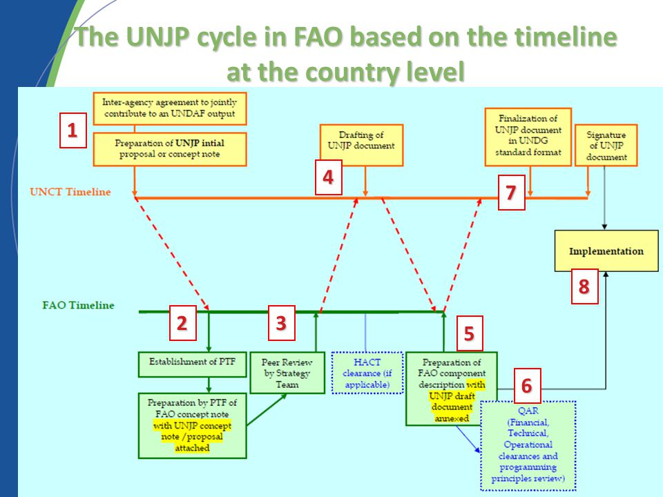 1 23 4 8 6 5 7 The UNJP cycle in FAO based on the timeline at the country level