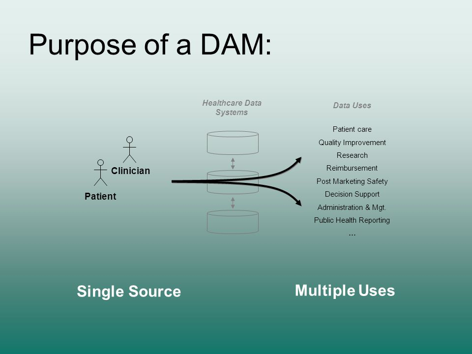 Purpose of a DAM: Patient Clinician Healthcare Data Systems Patient care Quality Improvement Research Reimbursement Post Marketing Safety Decision Sup