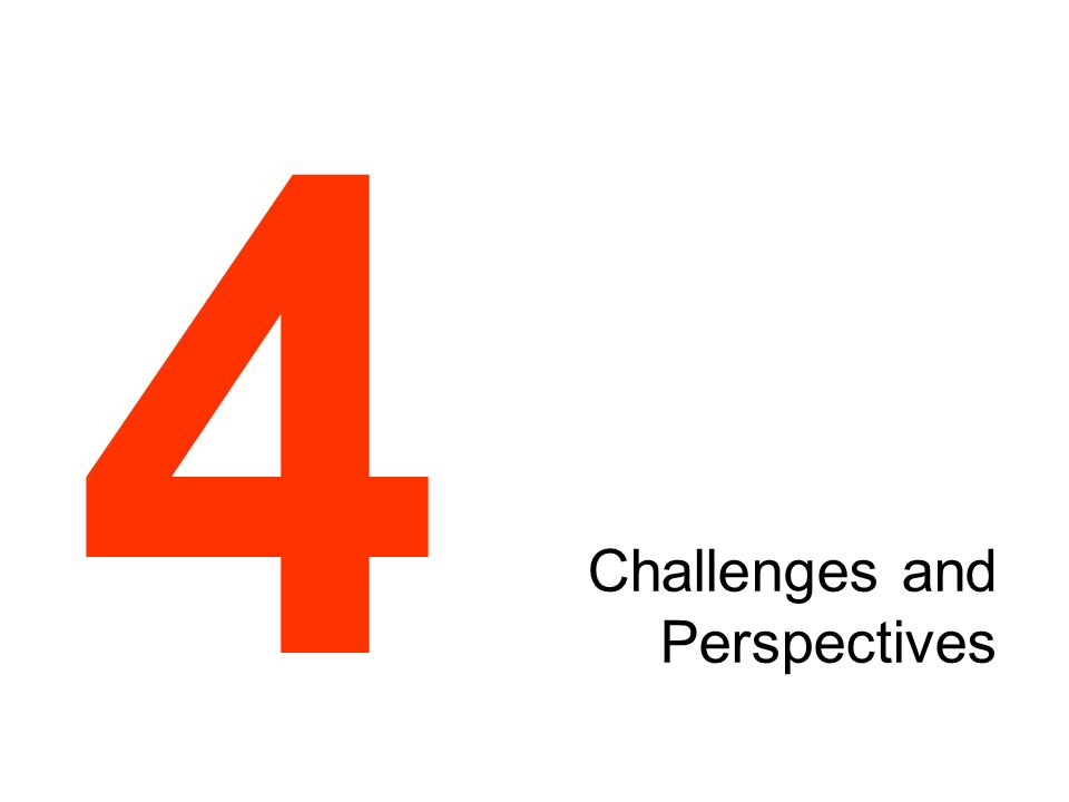 Challenges and Perspectives 4