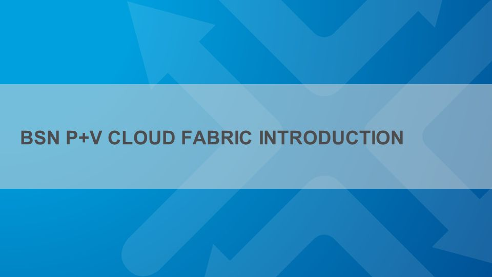 BSN P+V CLOUD FABRIC INTRODUCTION