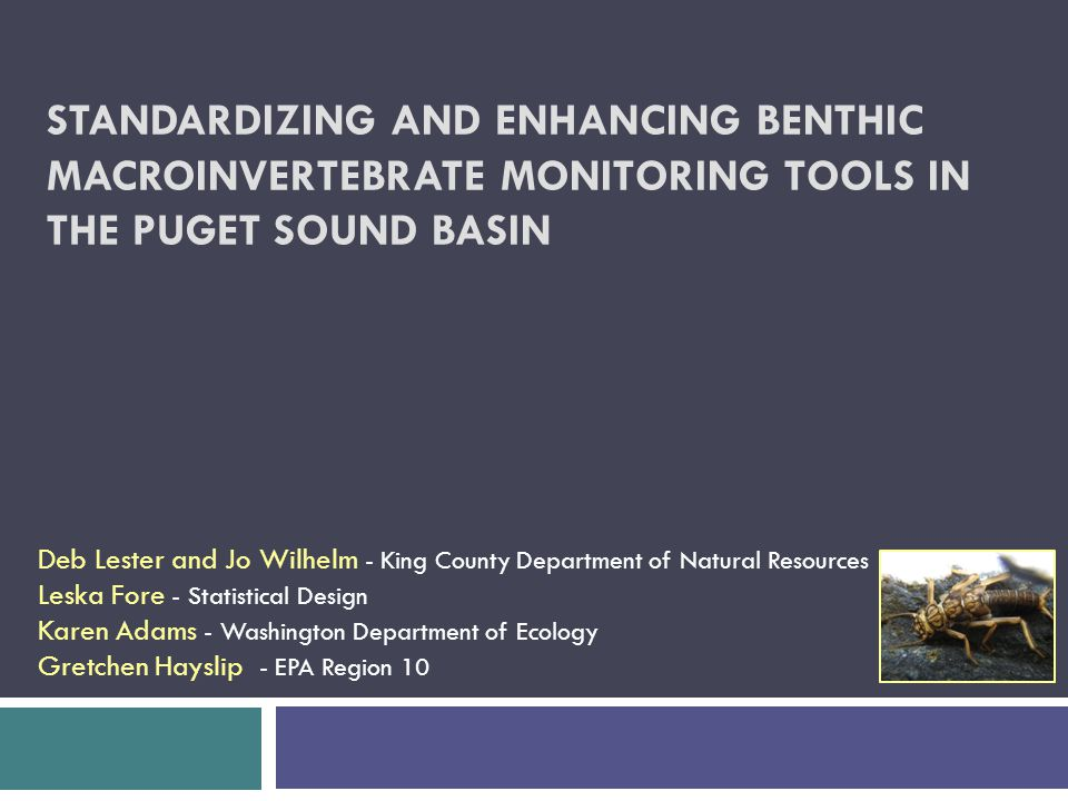 STANDARDIZING AND ENHANCING BENTHIC MACROINVERTEBRATE MONITORING TOOLS IN THE PUGET SOUND BASIN Deb Lester and Jo Wilhelm - King County Department of Natural Resources Leska Fore - Statistical Design Karen Adams - Washington Department of Ecology Gretchen Hayslip - EPA Region 10