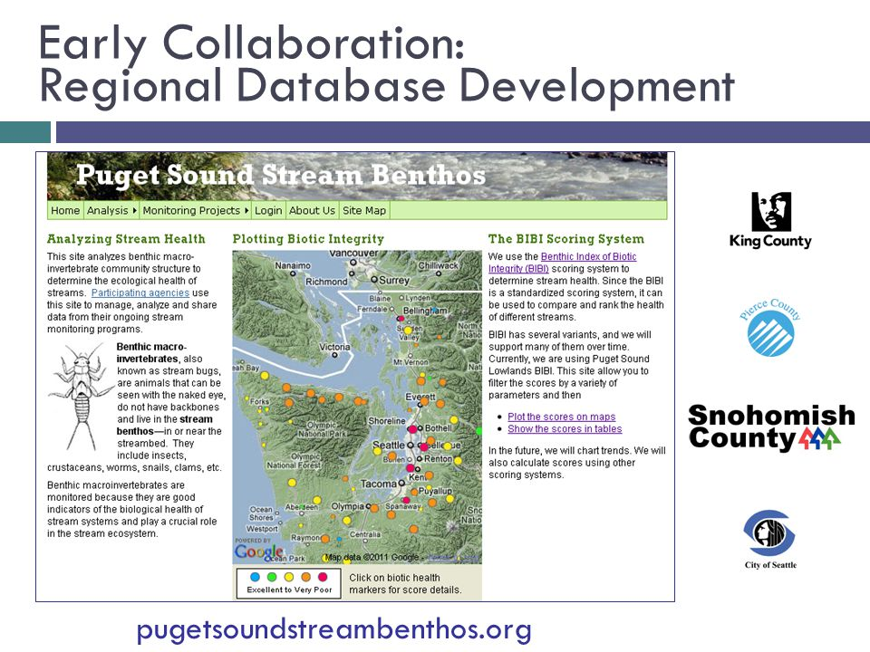Early Collaboration: Regional Database Development pugetsoundstreambenthos.org