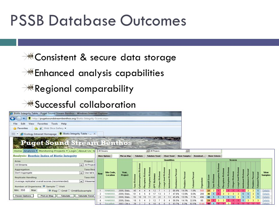 PSSB Database Outcomes Consistent & secure data storage Enhanced analysis capabilities Regional comparability Successful collaboration