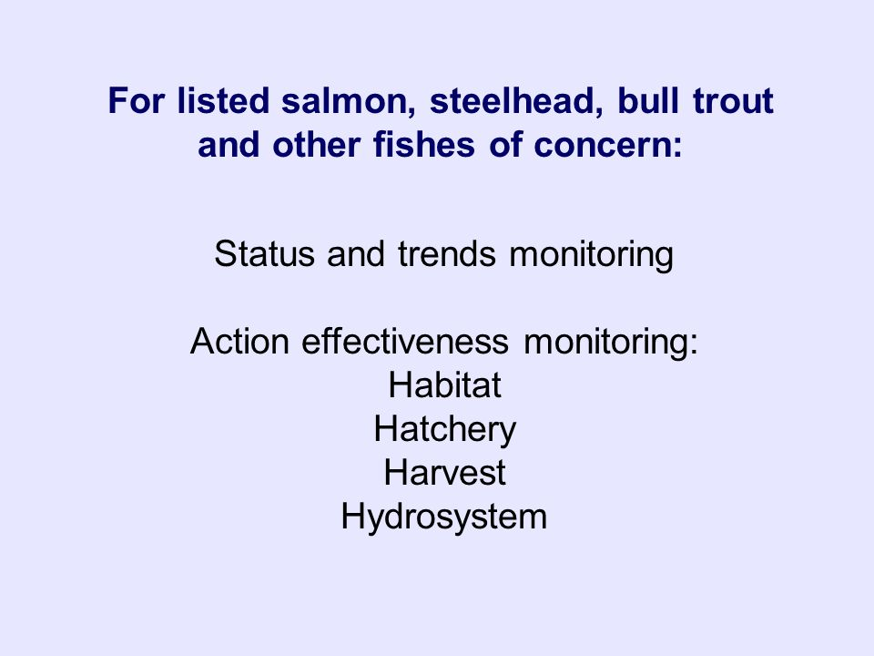 Status and trends monitoring Action effectiveness monitoring: Habitat Hatchery Harvest Hydrosystem For listed salmon, steelhead, bull trout and other fishes of concern: