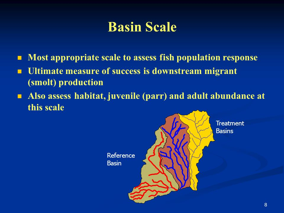 8 Basin Scale Most appropriate scale to assess fish population response Ultimate measure of success is downstream migrant (smolt) production Also assess habitat, juvenile (parr) and adult abundance at this scale Reference Basin Treatment Basins