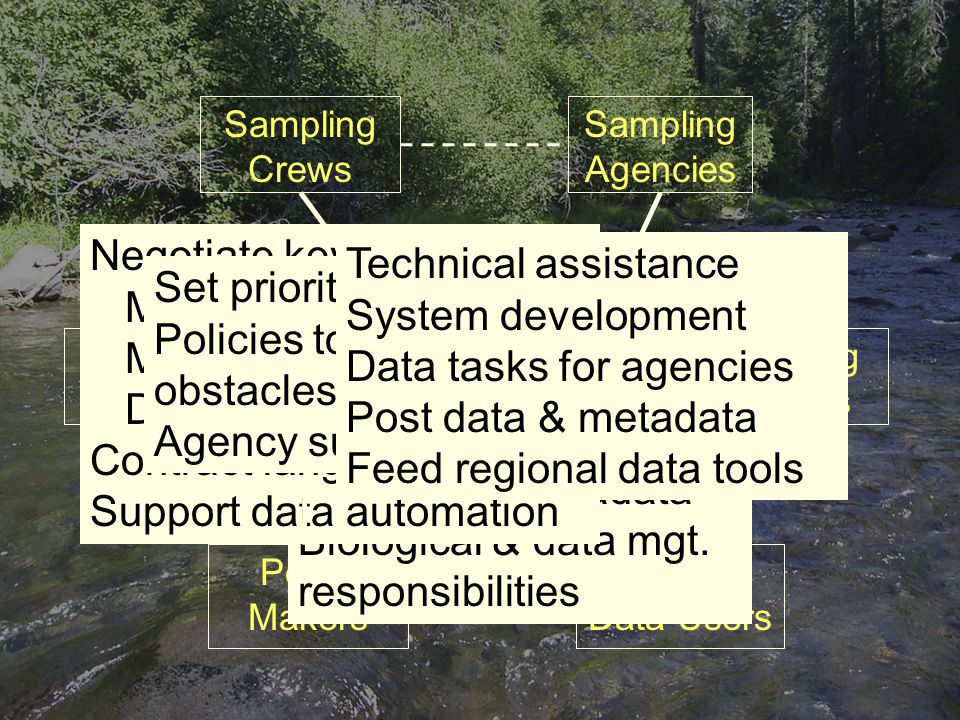 Sampling Crews Sampling Agencies Funding Entities Regional Data Users Database Projects Policy Makers Roles Create the data Data Entry QA Describe the data Maintain the data Establish procedures Set standards, codes Agency data systems Post data / metadata Biological & data mgt.