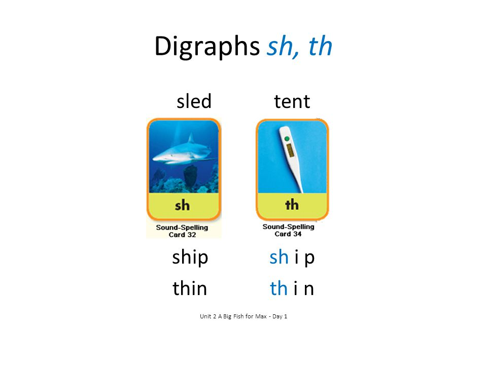 Digraphs sh, th sledtent shipsh i p thinth i n Unit 2 A Big Fish for Max - Day 1