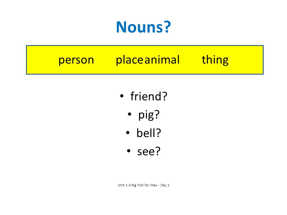 Nouns? person placeanimalthing friend? pig? bell? see? Unit 1 A Big Fish for Max - Day 1