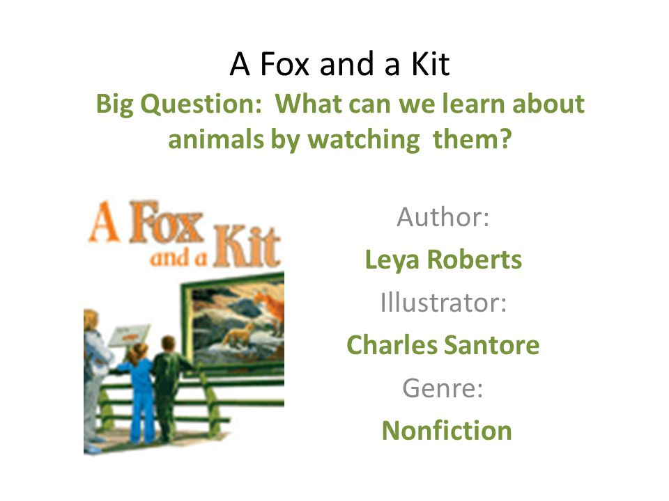 A Fox and a Kit Big Question: What can we learn about animals by watching them.