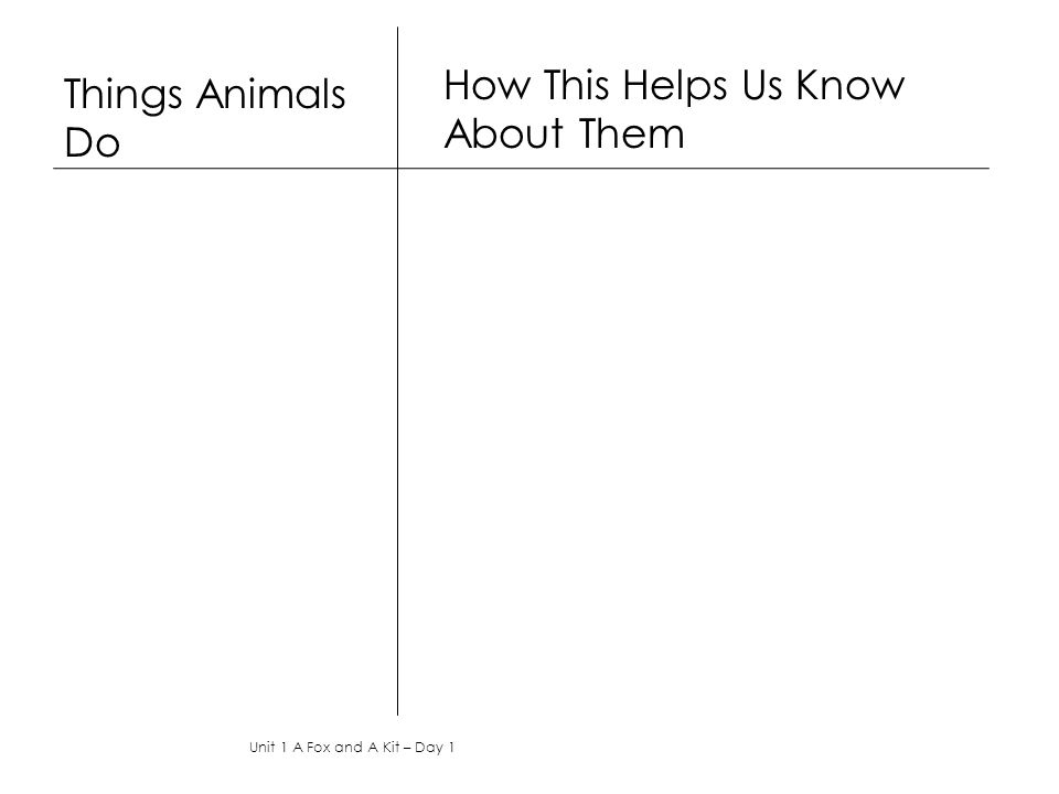 Things Animals Do How This Helps Us Know About Them Unit 1 A Fox and A Kit – Day 1