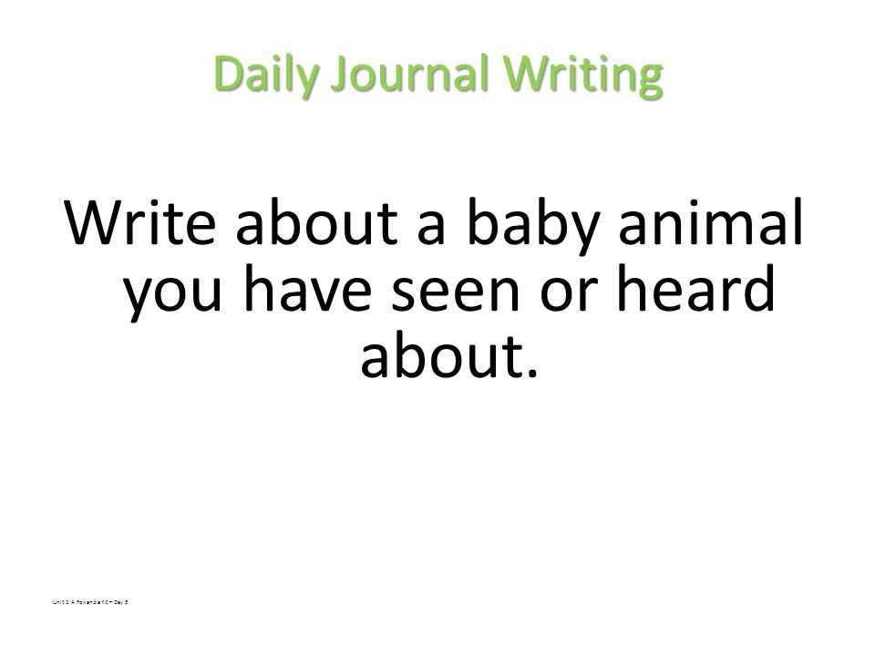 Daily Journal Writing Write about a baby animal you have seen or heard about.