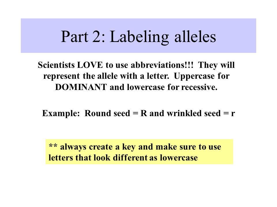 Part 2: Labeling alleles Scientists LOVE to use abbreviations!!.