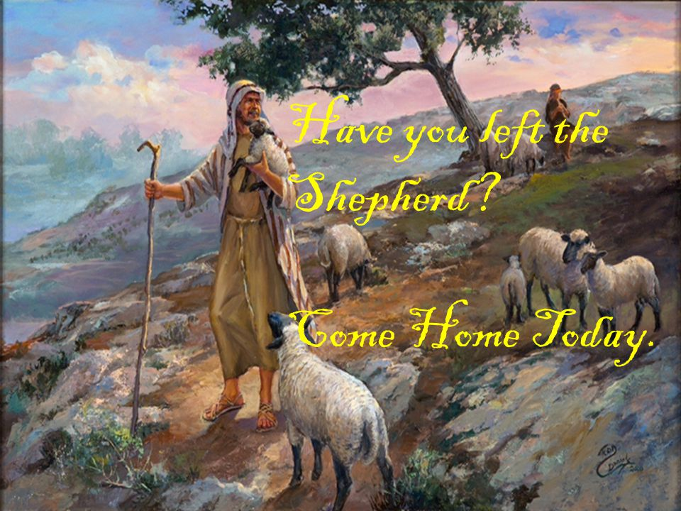 Have you left the Shepherd? Come Home Today.