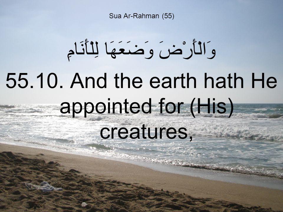 Sua Ar-Rahman (55) وَالْأَرْضَ وَضَعَهَا لِلْأَنَامِ 55.10.