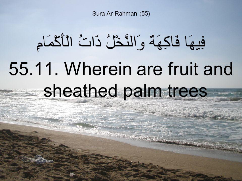 Sura Ar-Rahman (55) فِيهَا فَاكِهَةٌ وَالنَّخْلُ ذَاتُ الْأَكْمَامِ 55.11.