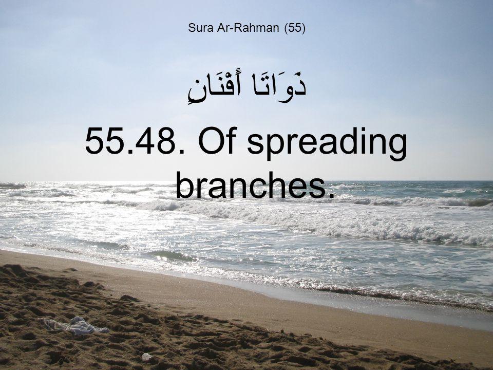 Sura Ar-Rahman (55) ذَوَاتَا أَفْنَانٍ 55.48. Of spreading branches.
