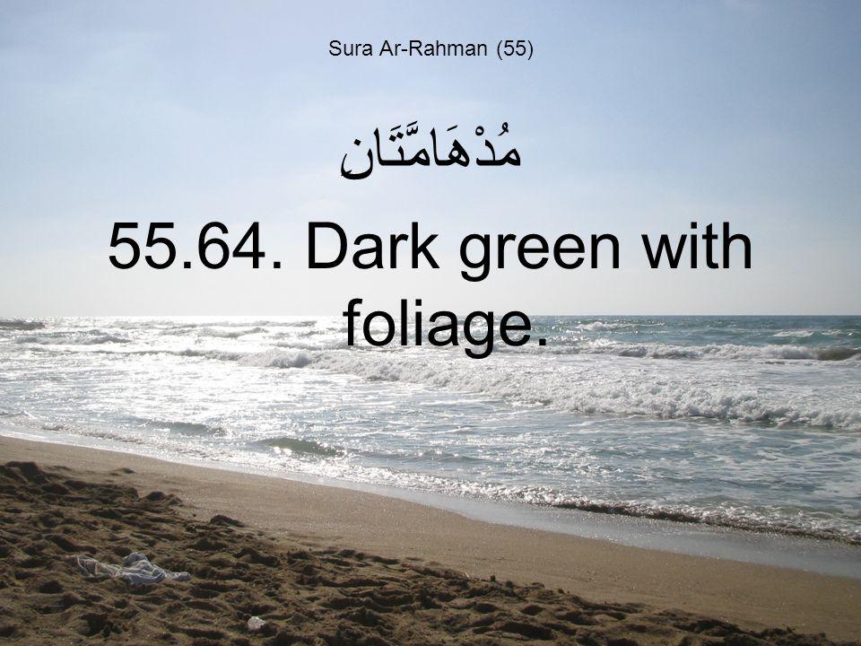 Sura Ar-Rahman (55) مُدْهَامَّتَانِ 55.64. Dark green with foliage.