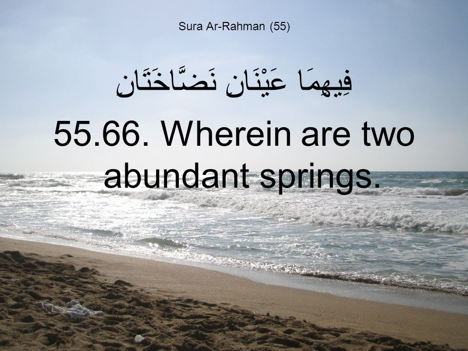 Sura Ar-Rahman (55) فِيهِمَا عَيْنَانِ نَضَّاخَتَانِ 55.66. Wherein are two abundant springs.