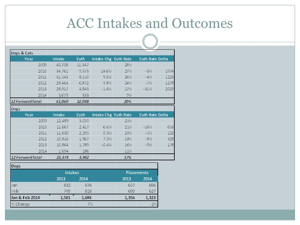 ACC Intakes and Outcomes