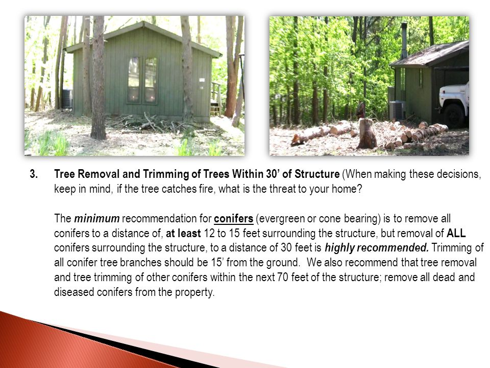 3.Tree Removal and Trimming of Trees Within 30' of Structure (When making these decisions, keep in mind, if the tree catches fire, what is the threat to your home.