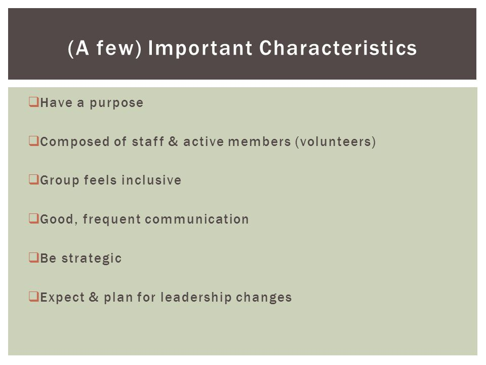  Have a purpose  Composed of staff & active members (volunteers)  Group feels inclusive  Good, frequent communication  Be strategic  Expect & plan for leadership changes (A few) Important Characteristics